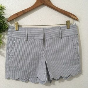 Ann Taylor Shorts with Scalloped Edge